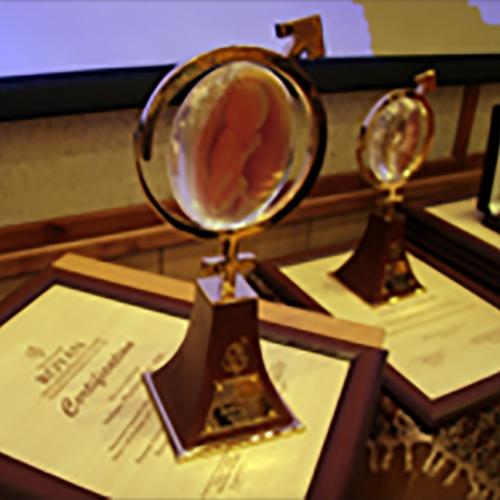 Royan International Research Award